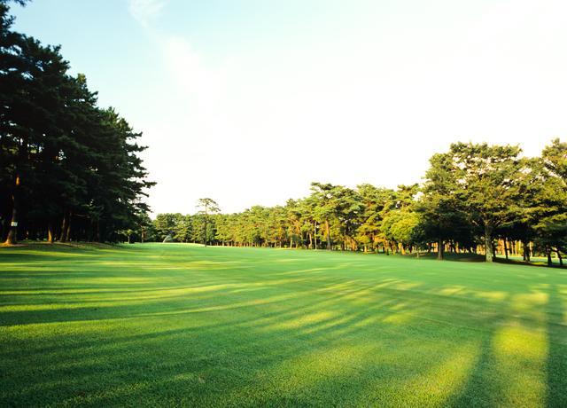 画像: 木々の間から差し込む夏の夕日、少し涼しくなりそうだ