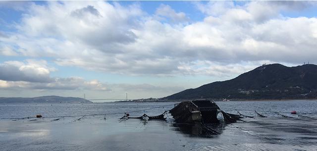 画像: 漁師直売・須磨海苔/すまうら水産オンラインショップ