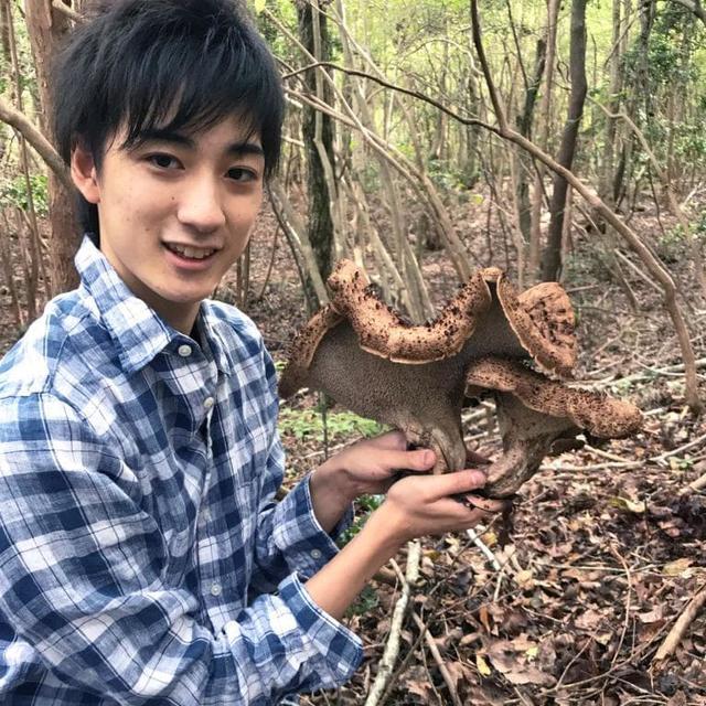 画像: 和田匠平のきのこ日記