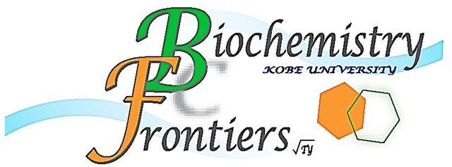 画像: Biochemistry Frontiers_top