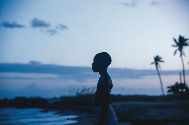 画像: 後者はマイアミの麻薬戦争を背景に一人の青年の成長を描くドラマで、ブラッド・ピットが製作に名を連ねている(日本公開未定)。どちらも黒人だけでなく多くの観客の問題意識を揺さぶる作品だ。 監督はインド出身のミーラー・ナーイルだが、チェスの天才と呼ばれた黒人少女(ルピタ・ニョンゴ演)の実話を描く『クィーン・オブ・カトウィ』(日本公開未定)も絡んできそう。 ムーンライト