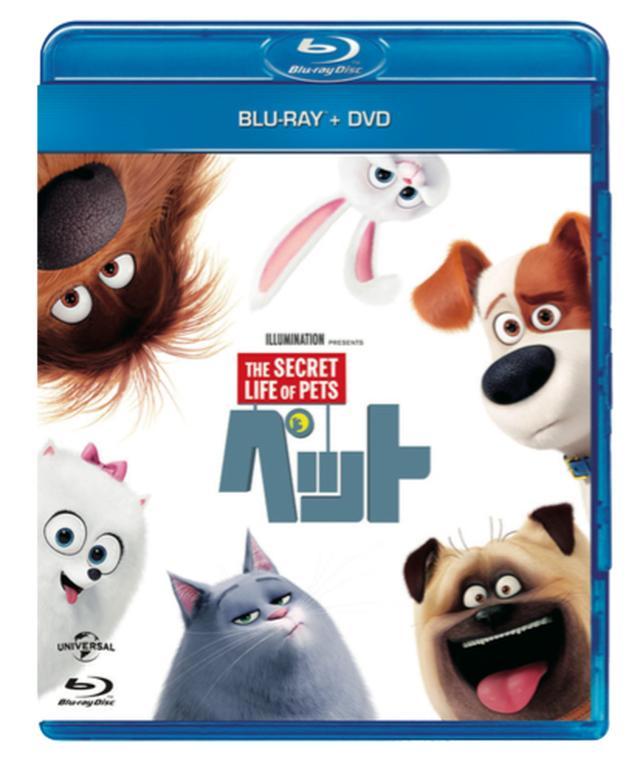 画像: 「ペット」ブルーレイ+DVDセット NBCユニバーサル・エンターテイメント 12月21日発売、3990円+税 特典=「ペット」の生みの親たち、おしゃべりなペットたち 声の出演者、ペットのすべて、飼い犬をおしゃれに、スノーボール名場面集、ミニオンの「ペット」鑑賞