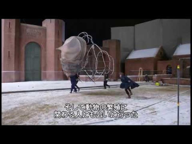 画像: 4月19日 Blu-ray&DVDリリース『ファンタスティック・ビーストと魔法使いの旅』映像特典「新たなキャラクターたち」 youtu.be