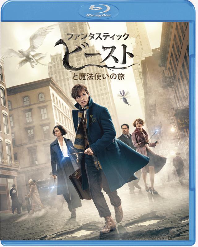 画像: 「ファンタスティック・ビーストと魔法使いの旅」 Blu-ray&DVDセット WBHE/4月19日発売、3990円+税(2枚組)、4K UHD&3D&2D BDセットは7990円+税(3枚組)、3D&2D BDセットは6990円+税(2枚組)、DVDは2990円+税で同時発 特典=魔法動物カード封入、新たな魔法時代の幕開け、新たなキャラクターたち、魔法動物たち、デザイン、未公開シーン集 wwws.warnerbros.co.jp
