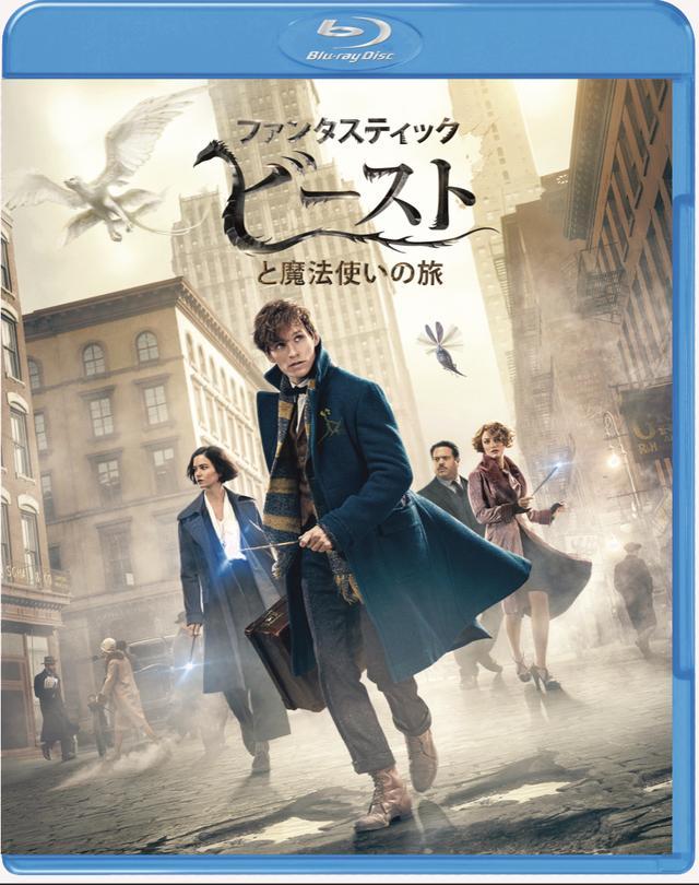 画像: 「ファンタスティック・ビーストと魔法使いの旅」 Blu-ray&DVDセット WBHE/2017年4月19日発売、3990円+税(2枚組)、4K UHD&3D&2D BDセットは7990円+税(3枚組)、3D&2D BDセットは6990円+税(2枚組)、DVDは2990円+税で同時発 特典=魔法動物カード封入、新たな魔法時代の幕開け、新たなキャラクターたち、魔法動物たち、デザイン、未公開シーン集 ©2016 Warner Bros. Entertainment Inc. All Rights Reserved. wwws.warnerbros.co.jp