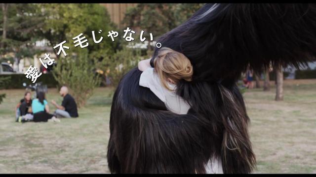 画像: 【予告編】映画『ありがとう、トニ・エルドマン』 youtu.be