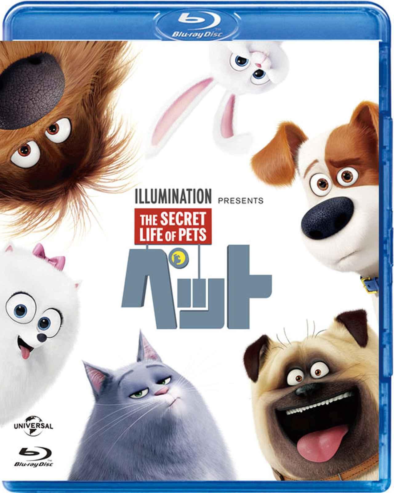 画像: 「ペット」 (Blu-ray¥1886+税、DVD¥1429+税) © 2015 Universal Studios. All Rights Reserved.