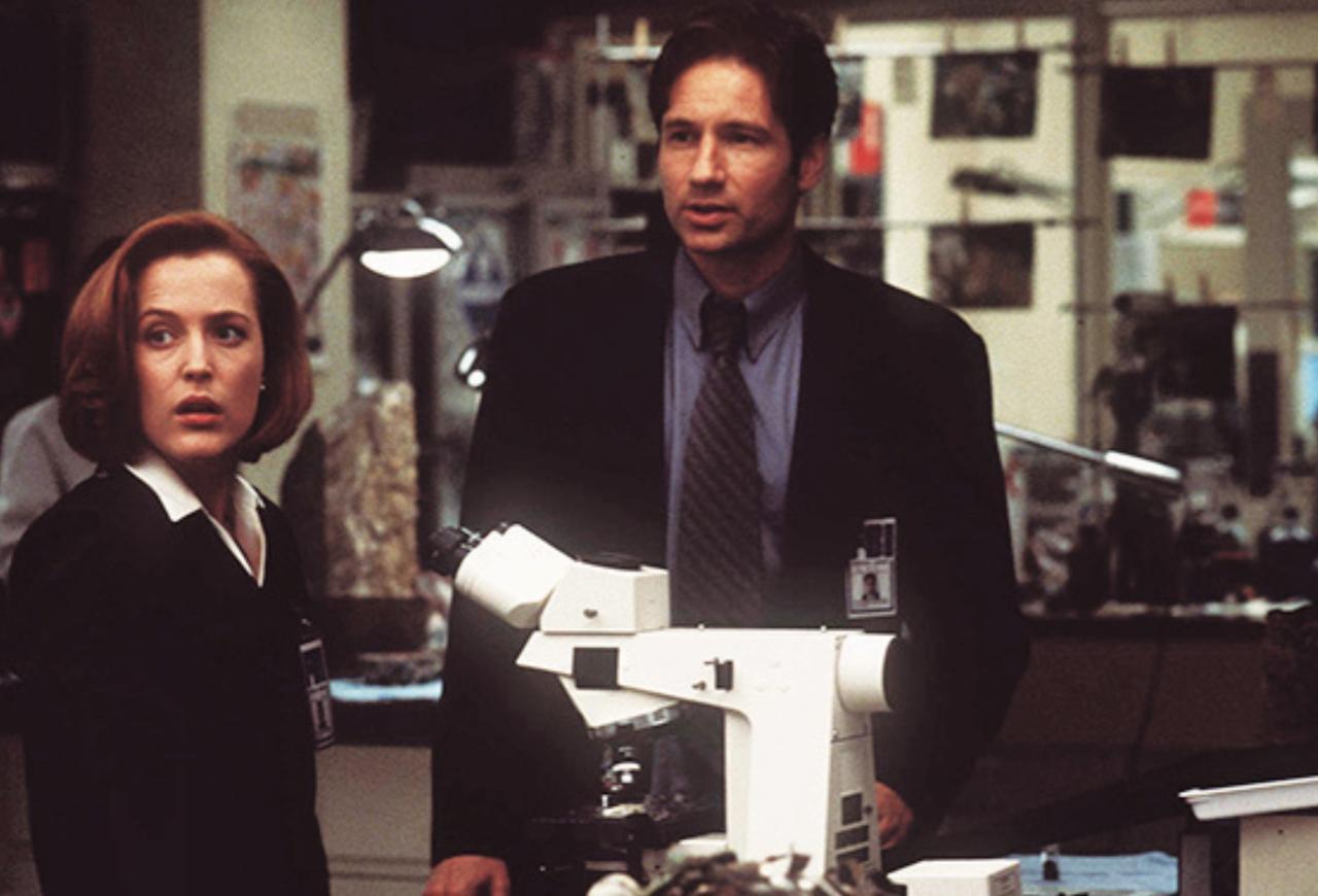 画像5: フルハウスにXファイル...90年代に活躍したあの人は今?ブームを呼んだTVシリーズ大調査!
