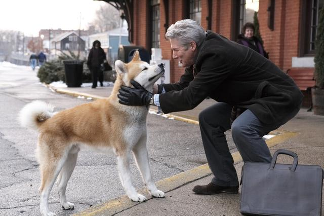 画像: 出演作:「HACHI 約束の犬」