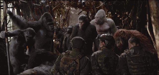 画像1: 絶体絶命の危機に陥ったシーザーに、反撃の手段はあるのか。そして、猿と人間の未来は?