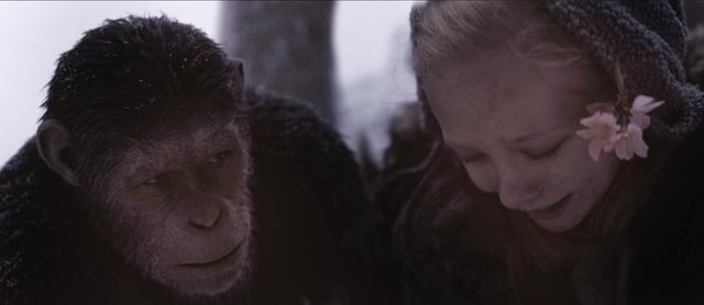 画像: 2011年の「猿の惑星:創世記」から始まった三部作の完結編