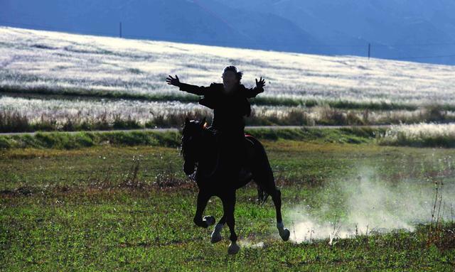 画像: 「馬を放つ」