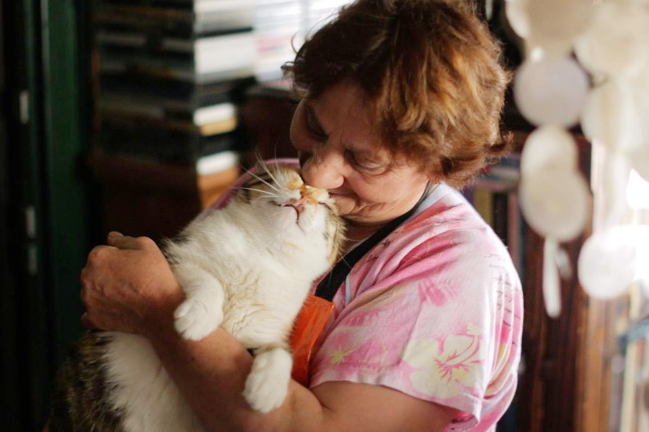 画像: 世界中で異例の大ヒット!映画『猫が教えてくれたこと』本ビジュアル解禁