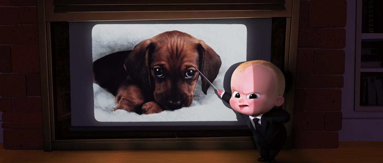 画像: ライバルはかわいい子犬