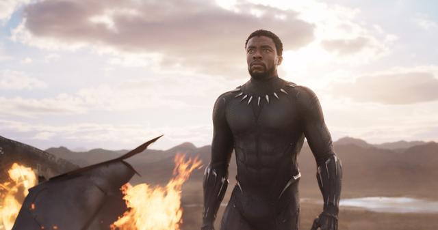 画像1: マーベル史上最も謎を秘めた新ヒーロー 「ブラックパンサー」いよいよ公開
