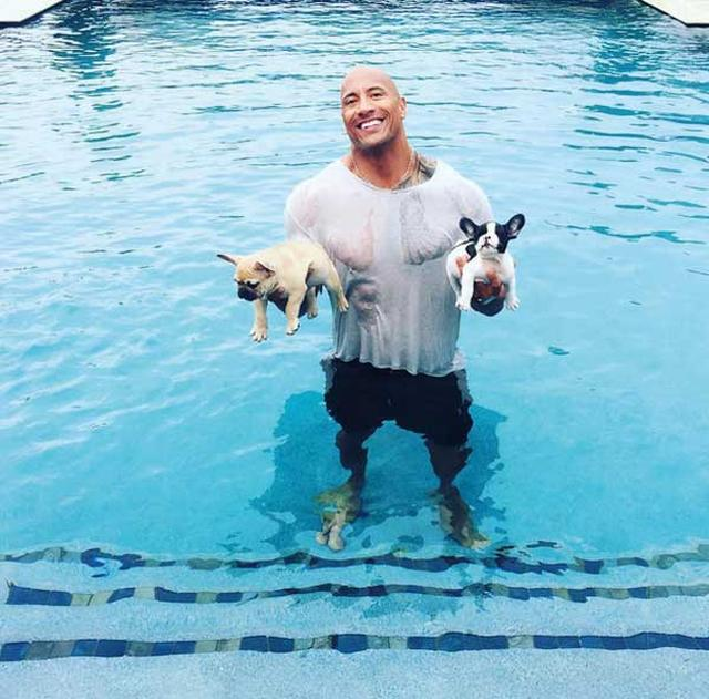 画像: 自宅のプールでワンちゃんを救った(インスタグラム@therockより)
