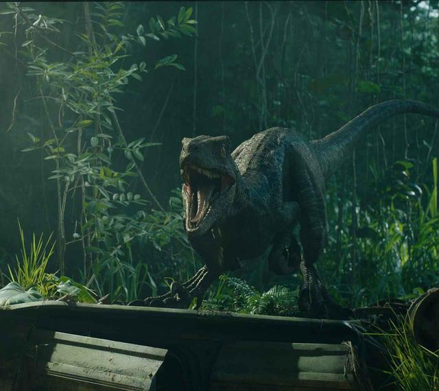 画像: 癒され必至! 恐竜と人間の絆が垣間見える『ジュラシック・ワールド/炎の王国』本編映像解禁! - SCREEN ONLINE(スクリーンオンライン)