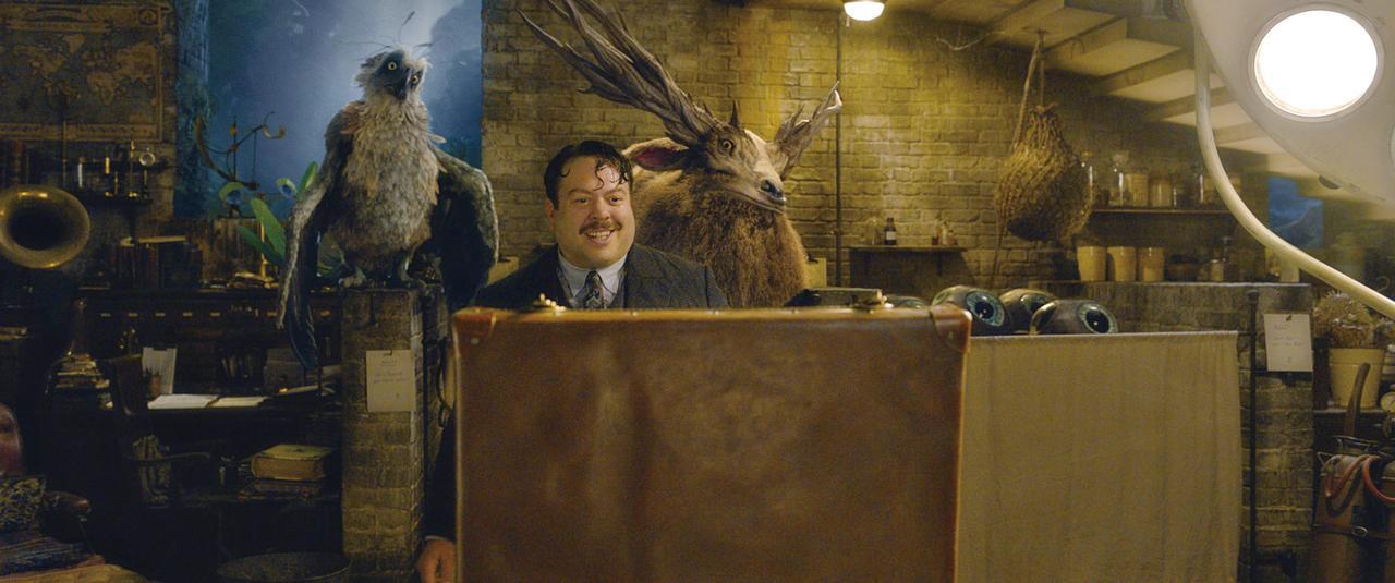 ファンタビの魔法動物教えます!ダンブルドア先生の魔法ワールド教室【3時間目】