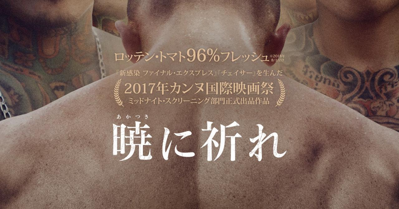画像: 映画『暁に祈れ』公式サイト 12月8日(土)全国ロードショー