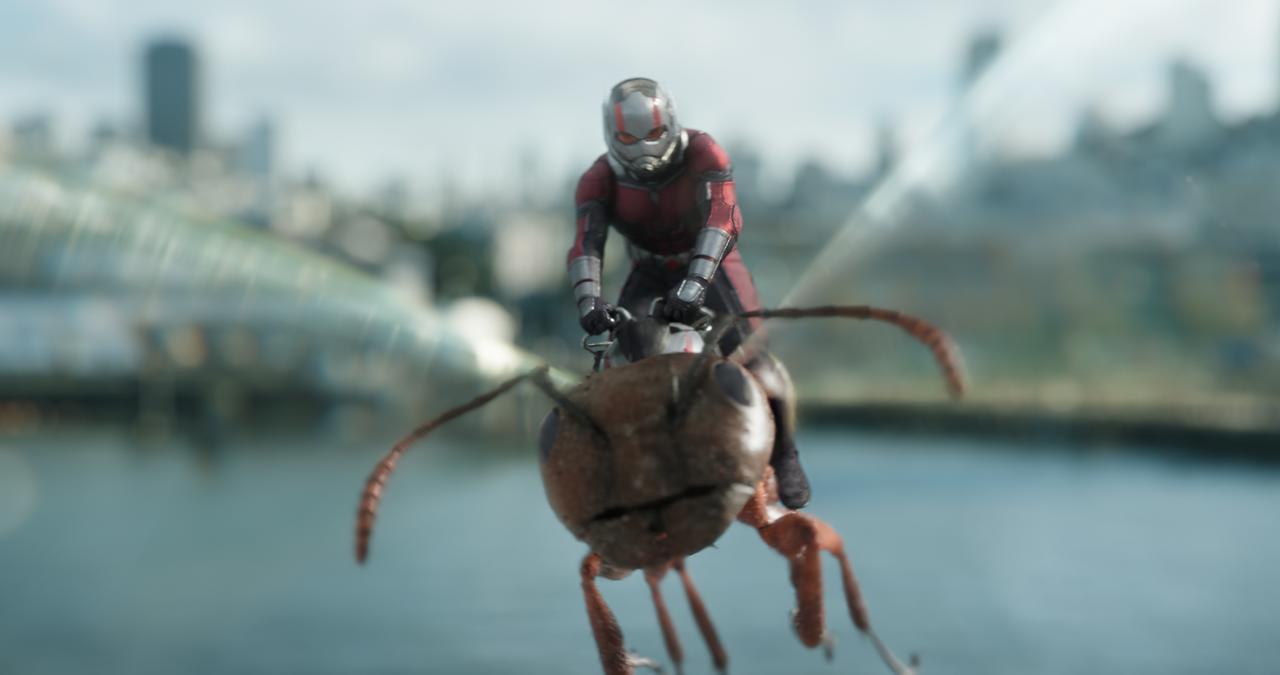 画像: アリえない!極小ヒーロー・コンビが「大」活躍 「アントマン&ワスプ」 - SCREEN ONLINE(スクリーンオンライン)
