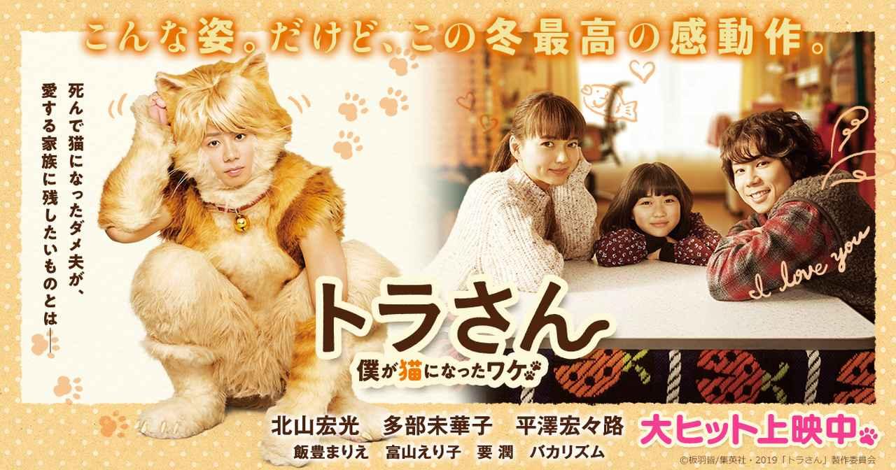画像: 映画『トラさん~僕が猫になったワケ~』北山宏光初主演作!大ヒット上映中!