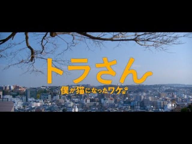画像: トラ泣き スペシャル映像 www.youtube.com
