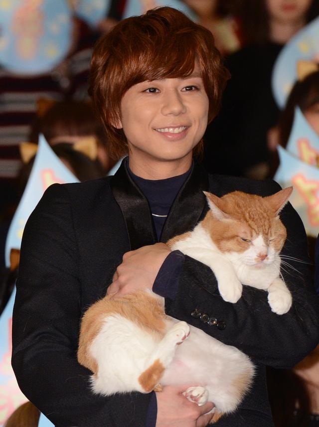 画像3: 猫になったファンがキャストをお出迎え!