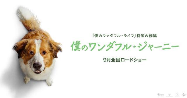 画像: 映画『僕のワンダフル・ジャーニー』公式サイト