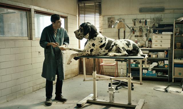 画像: 「ドッグマン」 マッテオ・ガローネ監督