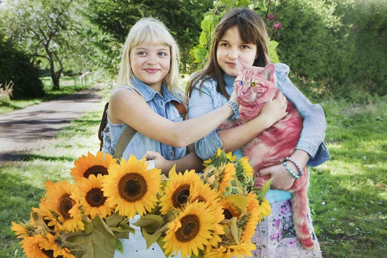 画像: フィンランドの国民的児童文学の実写映画化第3弾が公開決定 - SCREEN ONLINE(スクリーンオンライン)