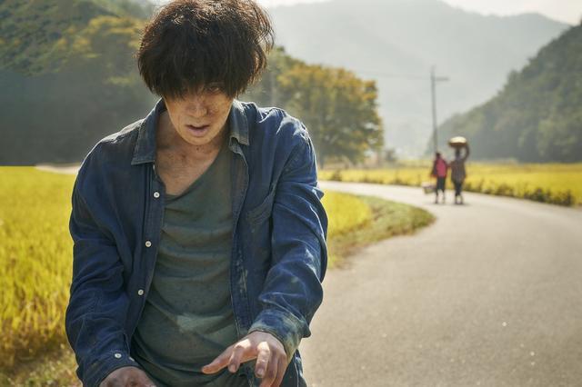 画像2: 崖っぷち家族がゾンビで一攫千金⁉ 韓国から新感覚のゾンビ映画が誕生