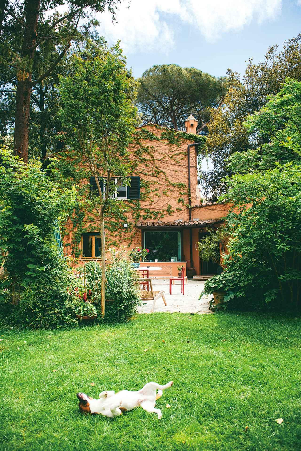 画像: 息子ルカが住むローマの家の庭は植物でいっぱい!