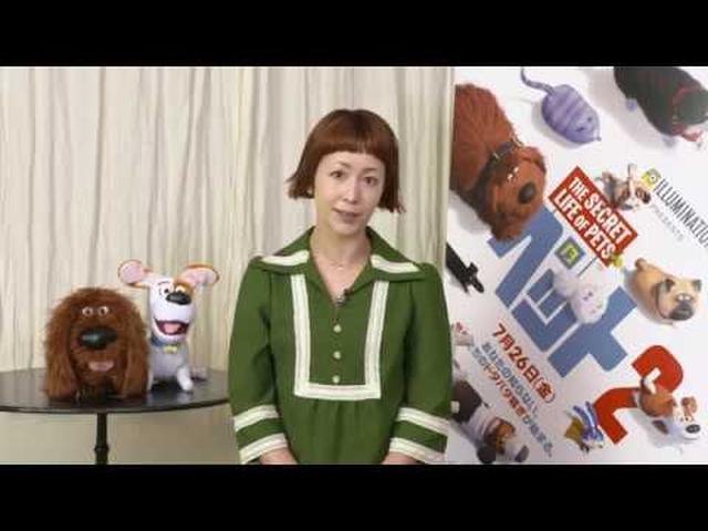 画像: 『ペット2』日本版イメージソング/木村カエラ「BREAKER」インタビュー映像 youtu.be