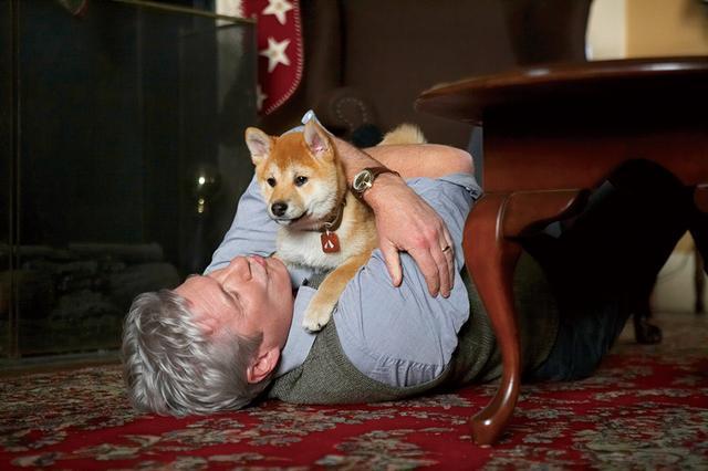 画像: 日本の忠犬の感動物語をハリウッド映画化