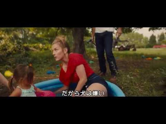 画像: 『僕のワンダフル・ジャーニー』ベイリーとグロリアの水遊び本編映像 youtu.be