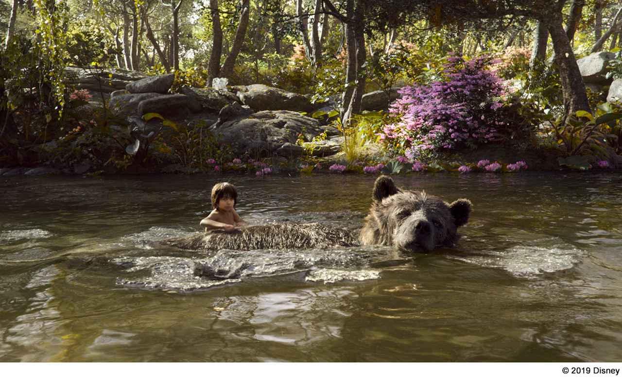画像: PART2:モーグリと愛すべきジャングルの仲間との物語「ジャングル・ブック」
