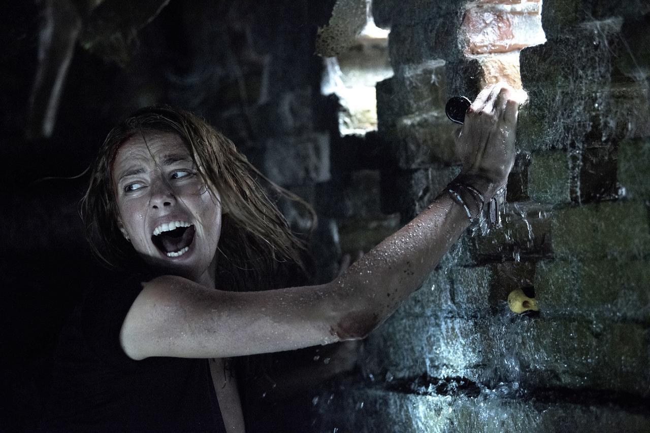 画像: サム・ライミが仕掛ける究極のサバイバルホラー、それはワニ!最恐映画「クロール ―凶暴領域―」がやってくる - SCREEN ONLINE(スクリーンオンライン)