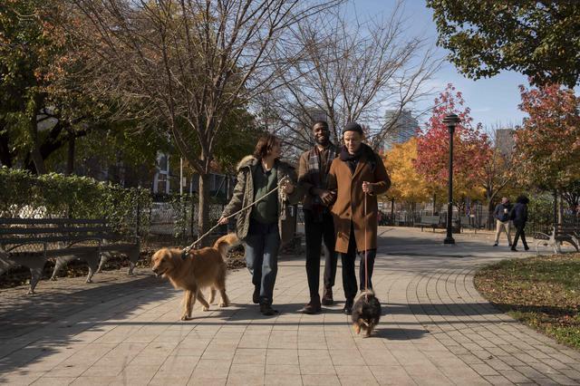 画像: ニューヨークの魅力が満載