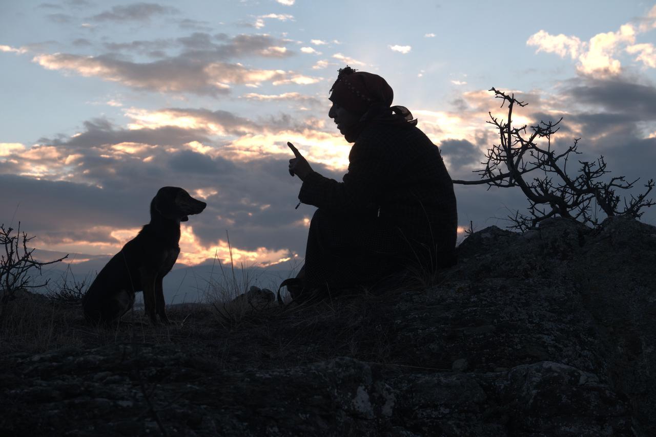 画像: アカデミー賞史上初の快挙!『ハニーランド 永遠の谷』公開決定