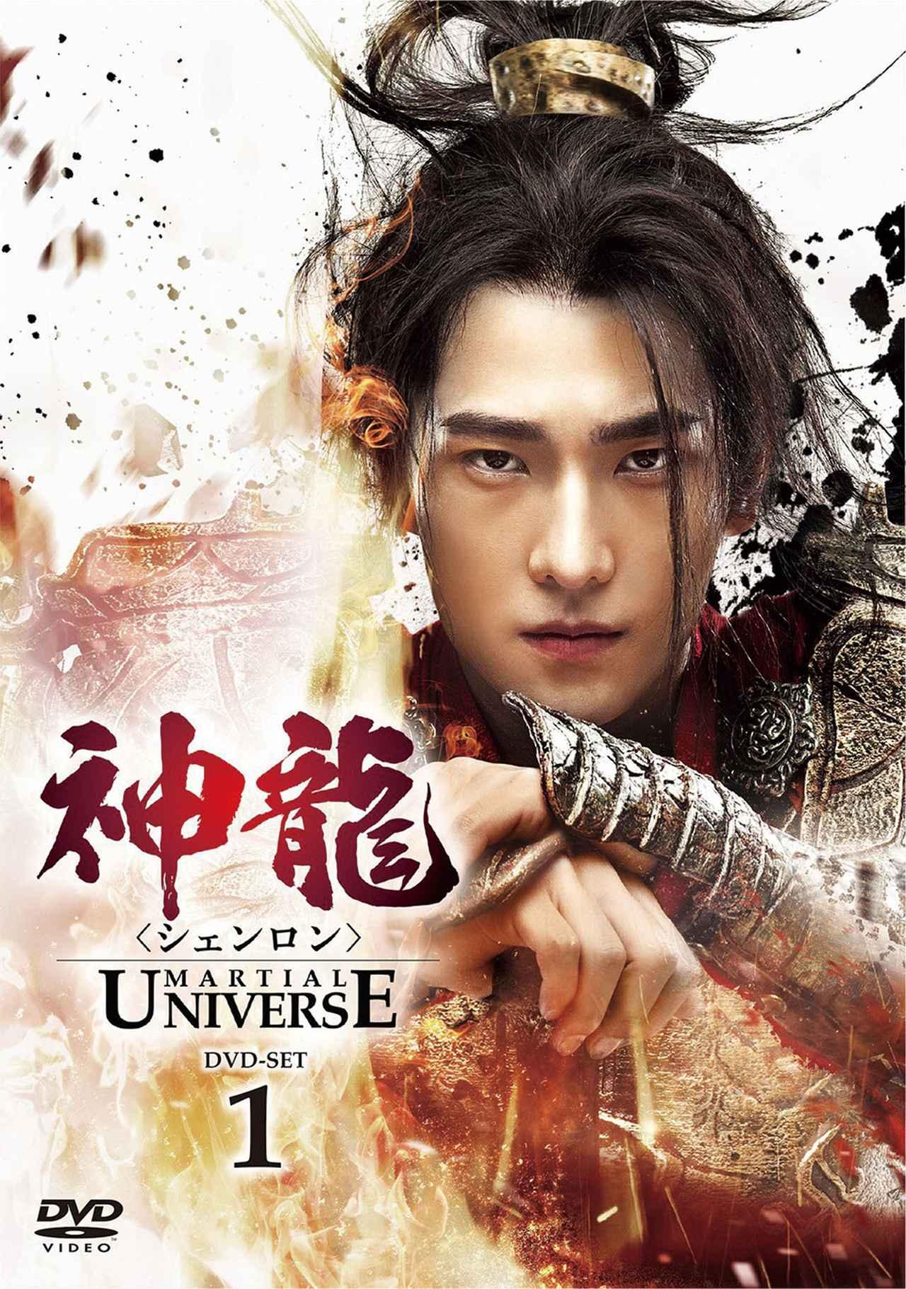 画像: 「神龍 -Martial Universe-」 (DVD-SET1~3/ NBCユニバーサル)