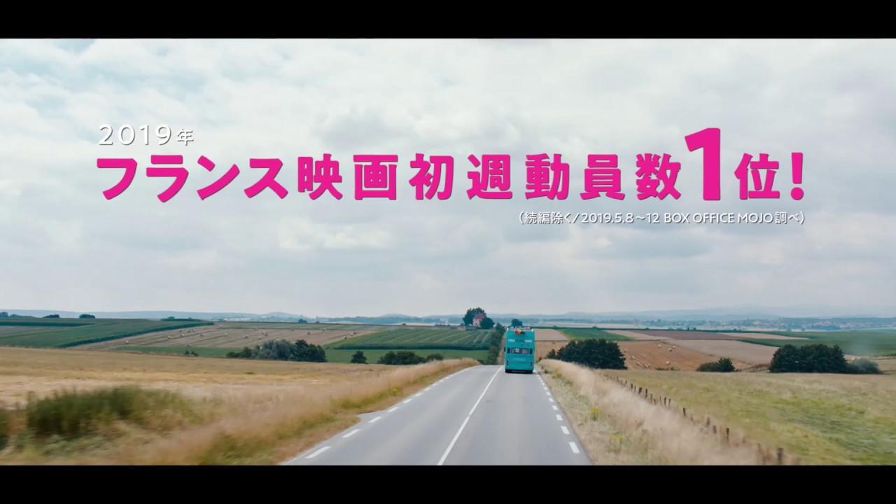 画像: 映画『シャイニー・シュリンプス!愉快で愛しい仲間たち』特報 youtu.be