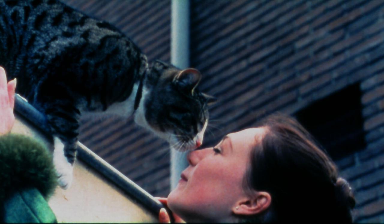 画像: こう見えても中身はネコ。もちろん好物はニシン