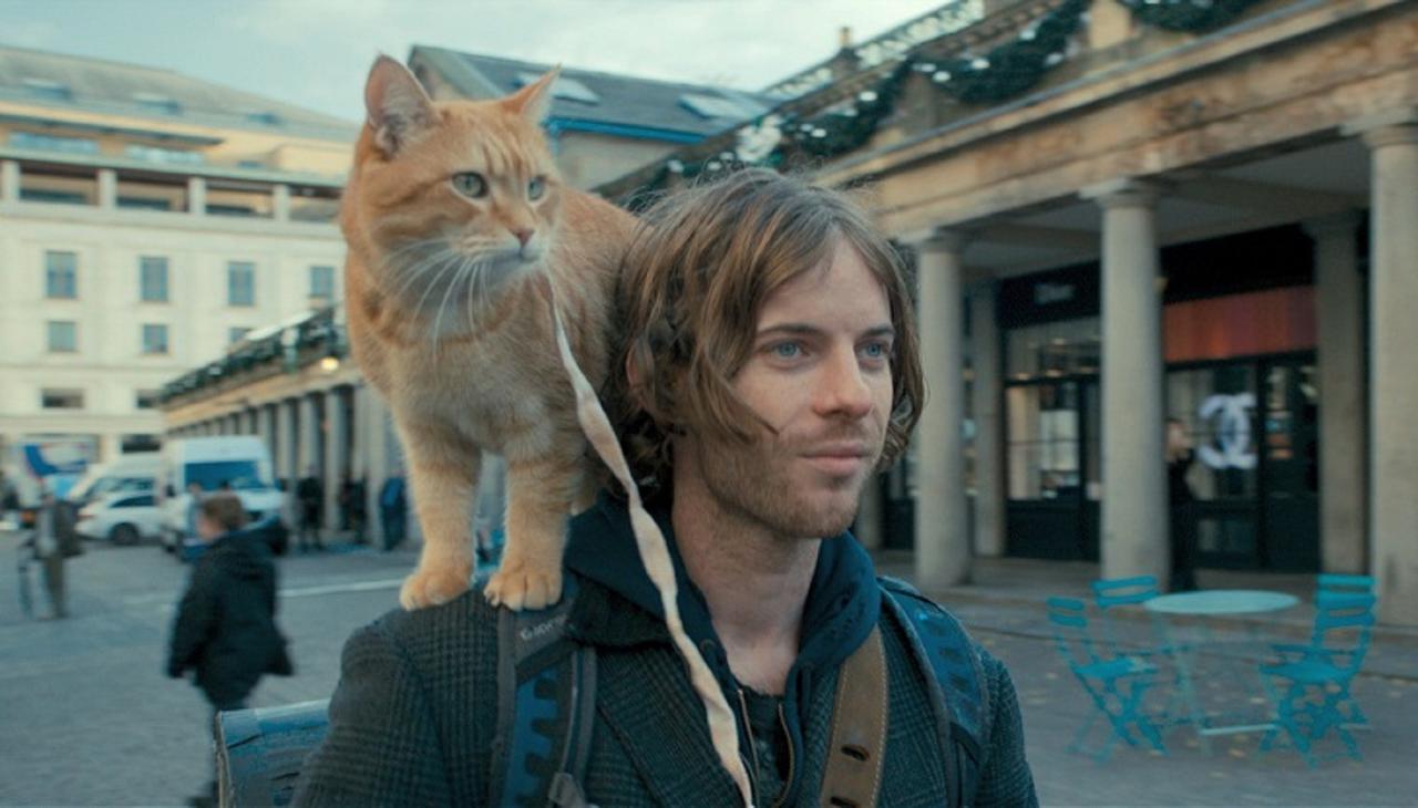"""画像: ジェームズにとってボブは幸運を運ぶ""""招き猫""""!"""