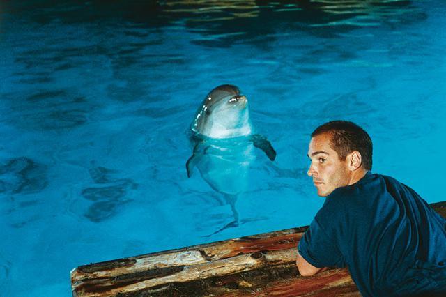 画像: 「深層心理」も意味する海の深い蒼 「グラン・ブルー」(1988)