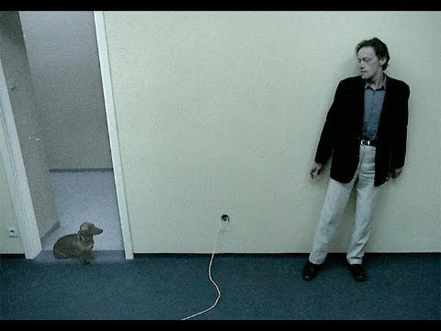 """画像: 『アングスト/不安』【""""犬だけは無事""""な特別映像】公開前に犬の安否を知りたい方へ(※一部犬のネタバレがあります) youtu.be"""