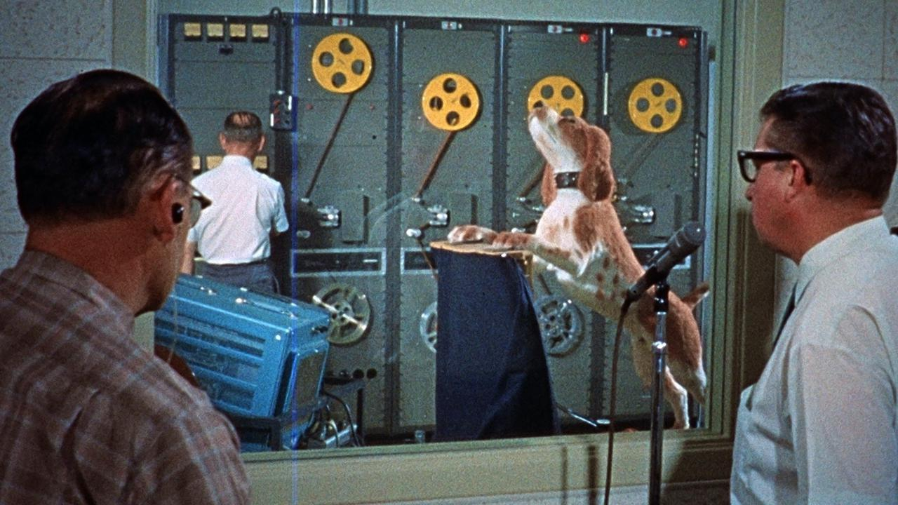 画像8: ディズニープラス独占配信/ディズニーパークの舞台裏を描くドキュメンタリー新情報解禁!