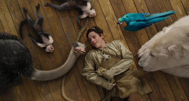 画像3: 瀕死のリスを救え!ドリトル先生と助手の動物たちが手術を決行!