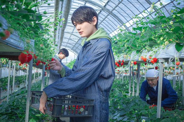 画像: 古川雄輝 ©2020 映画「リスタートはただいまのあとで」製作委員会