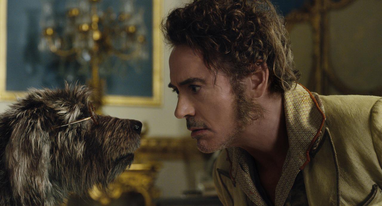 画像: イヌのジップに声を当てるのはトム・ホランド