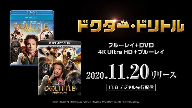 画像: 『ドクター・ドリトル』2020年11月20日(金)ブルーレイ&DVDリリース!2020年11月6日(金)先行デジタル配信 www.youtube.com